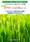 トリクロロエチレン・塩化メチレンの代替 臭素系洗浄剤 「eクリーン21Nシリーズ」 カタログ