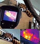 大牟田市動物園サーモグラフィカメラ活用事例  「FLIR E6-XT」